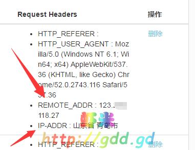 xss平台IP获取功能
