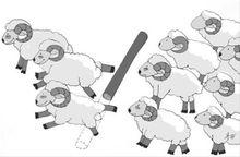 """有意思的""""羊群效应"""""""