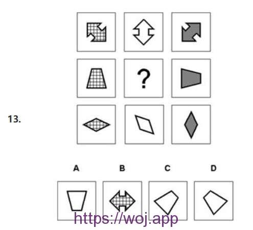图形推理第十三题