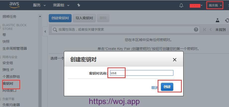 免费拿12个月亚马逊(AWS)的云服务器及'服务器超详细设置'